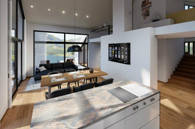 Design penthouse kitchen